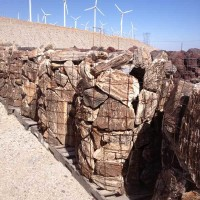 Mexican Driftwood Rock