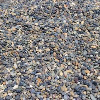 Mexican LaPaz Mix Pebbles